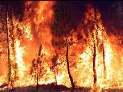 Incendios ahora mismo en Europa